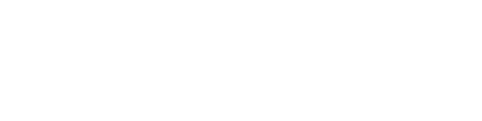 Canyon Mountain Consulting